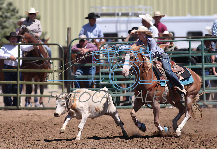 Brianna Nalder competes in the women's steer stopping event the Minden Ranch Rodeo on Sunday, July 24, 2011, in Gardnerville, Nev. .Photo by Cathleen Allison