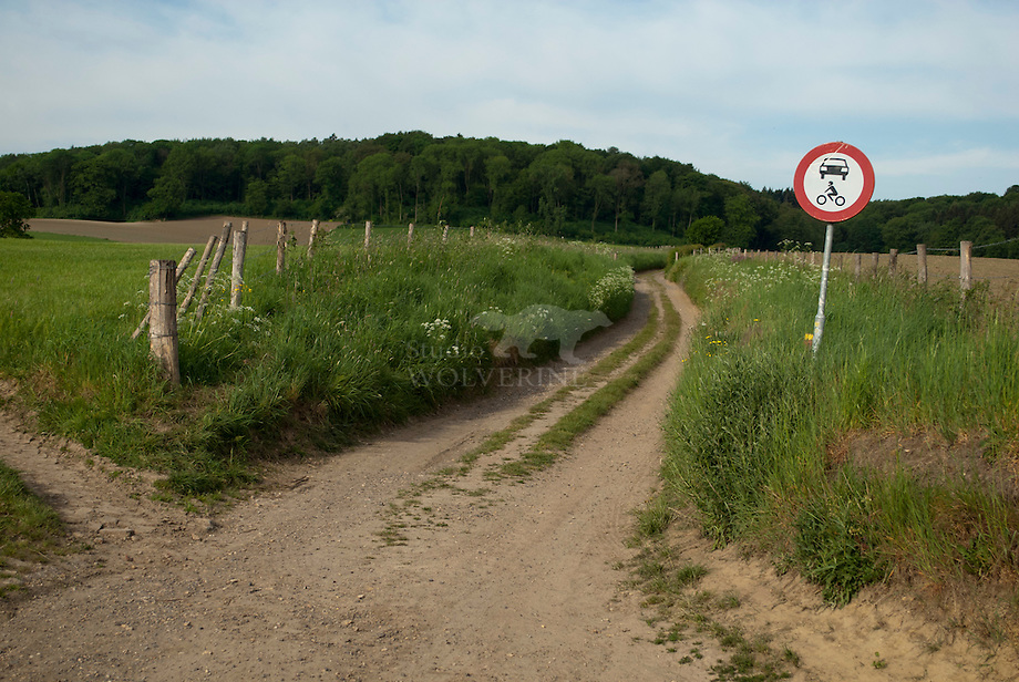 Landweg richting Bovenste bos - Zuid-Limburg