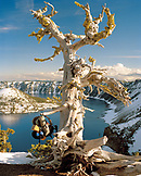 USA, Oregon, a backpack hanging from large dead tree, Crater Lake National Park