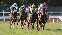 Scenes from around the track on October 13, 2012 at Belmont Park in Elmont, New York.  (Bob Mayberger/Eclipse Sportswire)