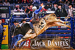 2015 Pro Bull Riding - Iron Cowboy VI