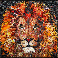 BNPS.co.uk (01202 558833)<br /> Pic: Bluebowerbird/BNPS<br /> <br /> Stunning lion created from upcycled plastic items.<br /> <br /> PopArt - Artist Jane Perkins recreates famous people and paintings from recycled plastic rubbish.<br /> <br /> Her stunning 'Plastic Classics' generate the most interest and sell for thousands of pounds.<br /> <br /> She has created rubbish replica's of famous paiintings by Van Gogh's, Monet, Raphael, Gustav Klimt, Salvi and Frida Kahlo as well as Japanese artist Katsushika Hokusai's the Great Wave of Kanagawa.<br /> <br /> She also creates pictures of animals for private commissions. For example, a stunning work of a tiger's head is made up of objects like plastic toy animals, golf tees and beads.<br /> <br /> Jane, a former hospital nurse from Kenton, near Exeter, Devon, now sells her work for up to &pound;2,500 a go.<br /> <br /> She said: &quot;I go to car boot sales and buy anything that is plastic, mostly toys and bits of broken jewellery, anything small. The neighbours often give me bags of bits and pieces they no longer want. <br /> <br /> &quot;People love them because they can see the whole image but also see what is in it. They can find things in them that they recognise, like little bits from their childhood.
