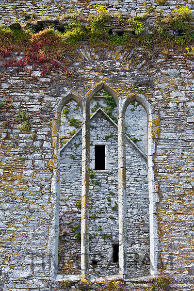 Ruins of a Franciscan friary built 13th and 17th Century, Timoleague, County Cork, Ireland