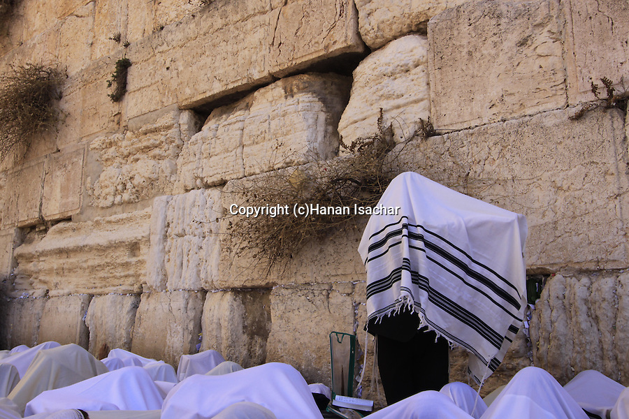 Israel, Jerusalem Old City, the Priestly Blessing ceremony at the Western Wall on Succot Holiday