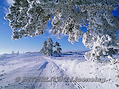 Marek, CHRISTMAS LANDSCAPES, WEIHNACHTEN WINTERLANDSCHAFTEN, NAVIDAD PAISAJES DE INVIERNO, photos+++++,PLMP0326Z,#xl#