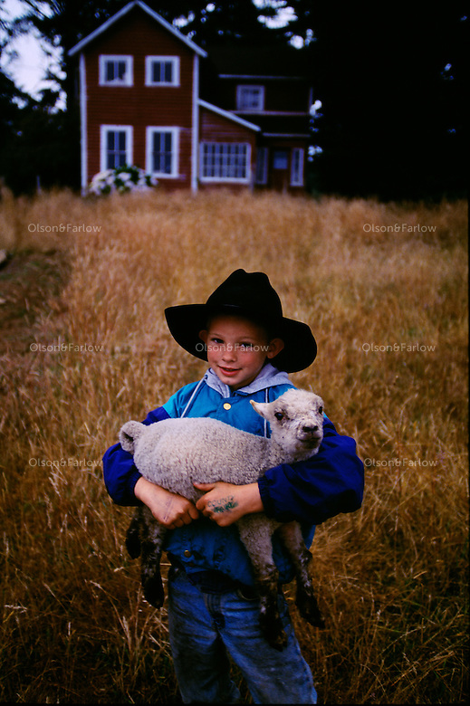 John Swenson coaxes his lamb and calf toward a livestock trailer with bottles of milk. He will take the animals to the Curry County Fair in Oregon. Six-year old John isn't a member of 4-H or Future Farmers of America yet, but he can join other Curry County youngsters who take their proudest efforts to the fair.