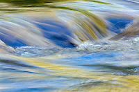 Flowing water and spring colors reflected on stream, Great Smoky Mountains National Park, Tennessee
