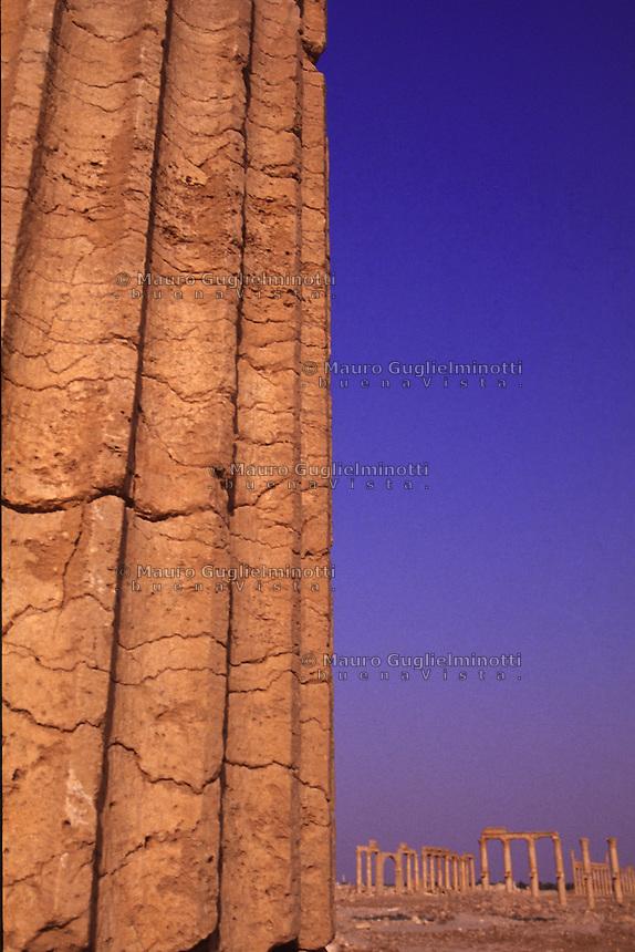SIRIA - sito di Palmira(Tadmor)  colonna