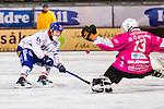 Stockholm 2013-11-26 Bandy Elitserien Hammarby IF - Edsbyns IF :  <br /> Edsbyn Jonas Edling har en m&aring;lchans i b&ouml;rjan p&aring; matchen<br /> (Foto: Kenta J&ouml;nsson) Nyckelord: