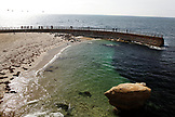 USA, California, San Diego, a group of seals sunbathing at Children's Pool Beach in La Jolla