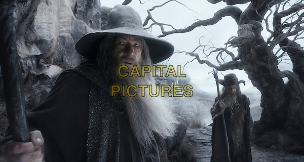 Ian McKellen<br /> in The Hobbit: The Desolation of Smaug (2013) <br /> *Filmstill - Editorial Use Only*<br /> CAP/NFS<br /> Image supplied by Capital Pictures