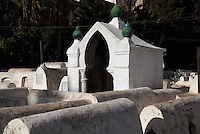 Tombs in the Jewish cemetery in the South West corner of the Mellah or Jewish quarter, established in 1438 when the Jews were driven out of the old town to al-Mallah, Fes, Fes-Boulemane, Northern Morocco. The tombs in separate enclosures are of rabbis, like this one with its arched entrance and green urn decoration. The oldest tombs date to the 16th century. In the 9th century, Idriss II admitted many Jews to Fes from Andalusia, the Jewish community thrived here until the 11th century. Picture by Manuel Cohen