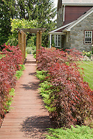 Curb appeal of Japanese maple trees and dwarf evergreens lining pathway to front door of house, with trellis, stone home, lawn, wooden walk allee