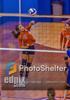 2 November 2014: Purchase College Panther Emily Seto, a Sophomore from North Brunswick, NJ, in action against the Yeshiva University Maccabees at SUNY Purchase College, in Purchase, NY. The Maccabees defeated the Panthers 3-1 in the NCAA Division III Women's Volleyball Skyline matchup. Mandatory Credit: Ed Wolfstein Photo *** RAW (NEF) Image File Available ***