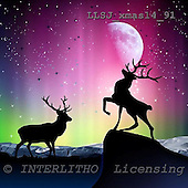 Sinead, CHRISTMAS SYMBOLS, paintings, LLSJXMAS14/91,#XX# Symbole, Weihnachten, Geschäft, símbolos, Navidad, corporativos, illustrations, pinturas