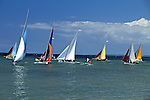 Sailboat Race
