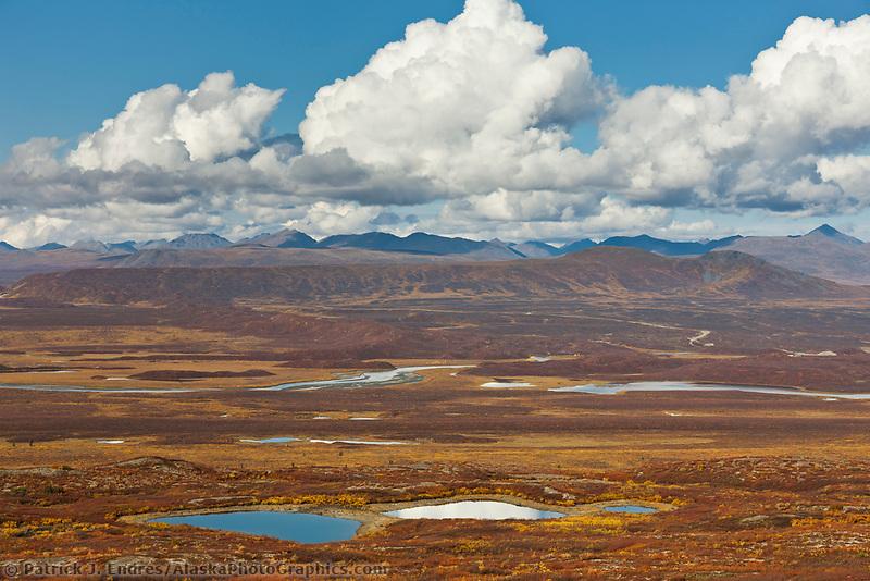 Autumn colors on the tundra wetlands, Denali highway, Alaska Range mountains, Interior, Alaska.
