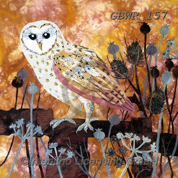 Simon, REALISTIC ANIMALS, REALISTISCHE TIERE, ANIMALES REALISTICOS, innovative, paintings+++++KateFindlay_AutumnBarnOwl,GBWR157,#a#, EVERYDAY