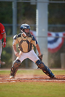 Mount St. Mary's Mountaineers catcher Zack Costello (18) checks the runner during a game against the Ball State Cardinals on March 9, 2019 at North Charlotte Regional Park in Port Charlotte, Florida.  Ball State defeated Mount St. Mary's 12-9.  (Mike Janes/Four Seam Images)