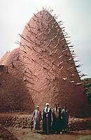World Civilization:  African Architecture--A view of Mosque of  Dougouba, Mali. According to tradition, it dates from the 13th century.  J-L Bourgeois and Carollee Pelos.  SPECTACULAR VERNACULAR.  Photo '91.