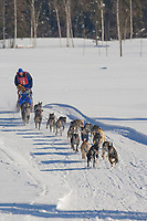 Musher Neal Johnson, 2007 Open North American Championship sled dog race (the world's premier sled dog sprint race) is held annually in Fairbanks, Alaska.