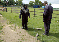Taking two ferrets for a walk.  14-16yr olds on the School Link Project doing Animal Care at F.E.College.