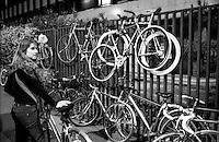Milano, biciclette incatenate ad un cancello --- Milan, bicycles locked to a gate