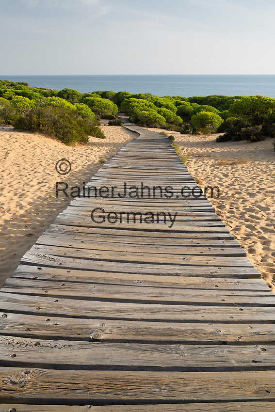 Spain, Andalucia, Huelva Province, Costa de la Luz, Mazagon: Wooden boardwalk leading through pines and sand to sea | Spanien, Andalusien, Provinz Huelva, Costa de la Luz, Mazagon: Holzweg zum Strand