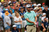 Nick Flanagan (AUS) on the 18th during Round 4 of the Australian PGA Championship at  RACV Royal Pines Resort, Gold Coast, Queensland, Australia. 22/12/2019.<br /> Picture Thos Caffrey / Golffile.ie<br /> <br /> All photo usage must carry mandatory copyright credit (© Golffile   Thos Caffrey)