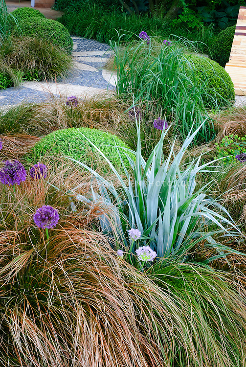 Cool colored soothing garden bed plant flower stock for Ornamental grass bed design
