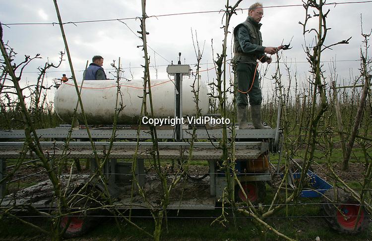 Foto: VidiPhoto..ANDELST - Personeel van fruitteler Jan van Olst uit het Betuwse Andelst snoeit de fruitbomen met een bijzonder constructie. Een oude aardgasgastank is omgebouwd tot hogedrukreservoir met daarin samengeperste lucht. Dat zorgt er voor dat de snoeimessen pneumatisch werken. De hele constructie is op een hoogwerker gebouwd. Zo kan er razendsnel gesnoeid worden.