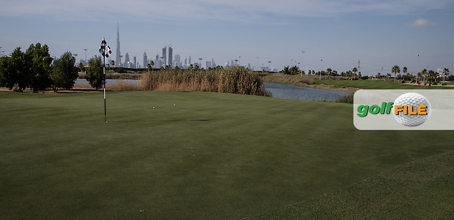 8th green, The Track at The Meydan Golf Club, Dubai, United Arab Emirates.  31/01/2016. Picture: Golffile | David Lloyd<br /> <br /> All photos usage must carry mandatory copyright credit (&copy; Golffile | David Lloyd)