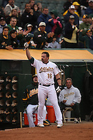 OAKLAND, CA - MAY 23:  Jason Giambi #16 of the Oakland Athletics acknowledges the crowd after hitting his 400th career home run against the Arizona Diamondbacks during the game at Oakland-Alameda County Coliseum on May 23, 2009 in Oakland, California. Photo by Brad Mangin