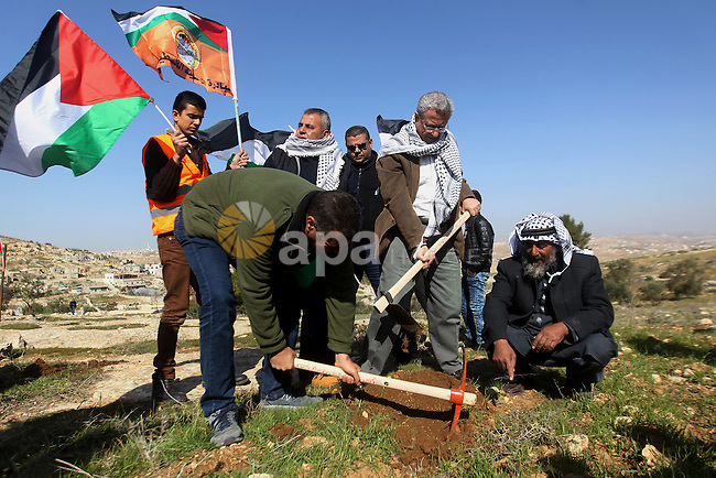 Palestinians plant trees during a demonstration against the construction of Jewish settlements in the occupied West Bank city of Hebron, on February 10, 2017. Photo by Wisam Hashlamoun