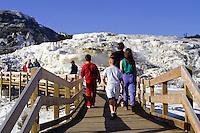 Tourists viewing Yellowstone national Park, Wyoming, USA