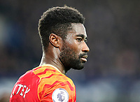 23rd  November 2019; Goodison Park , Liverpool, Merseyside, England; English Premier League Football, Everton versus Norwich City; Alexander Tettey of Norwich City  - Strictly Editorial Use Only. No use with unauthorized audio, video, data, fixture lists, club/league logos or 'live' services. Online in-match use limited to 120 images, no video emulation. No use in betting, games or single club/league/player publications