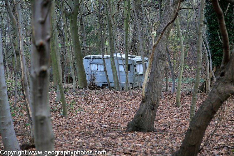 Old caravan seen through tree trunks alone in the woods, Shottisham, Suffolk, England, UK