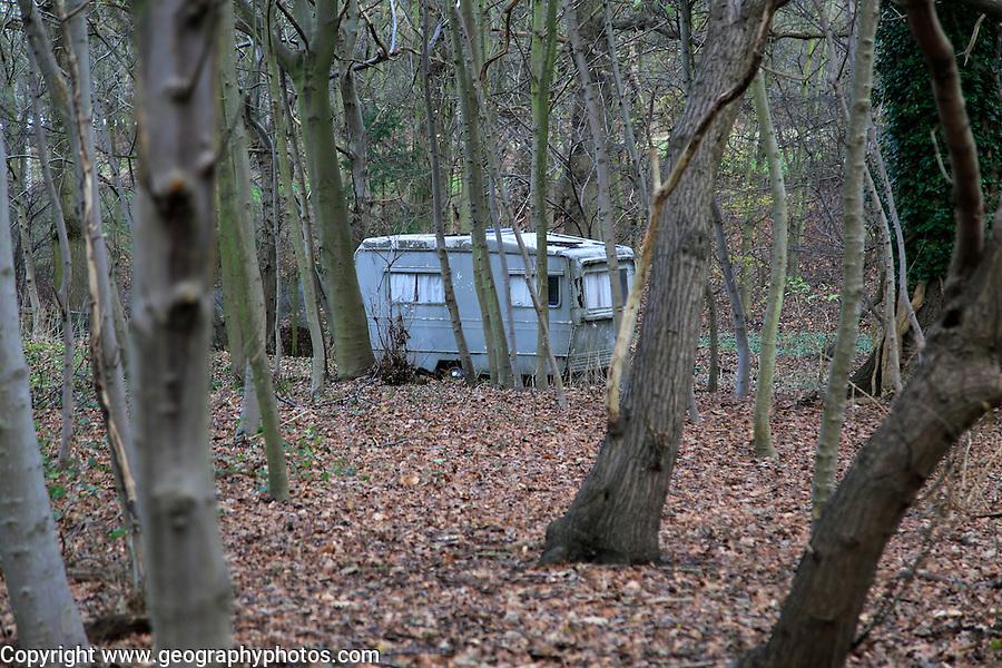 Old caravan seen through tree trunks alone in the woods, Shottisham, Suffolk, England, UK