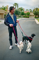 SCOTTSDALE, AZ - Manager Tony La Russa of the Oakland Athletics walks some of his dogs during spring training at his home in Scottsdale, Arizona in 1994. Photo by Brad Mangin
