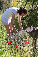 Mädchen, Kind erntet Kräuter im Garten, Kräutergarten, Ernte, Beet, Kräuterbeet