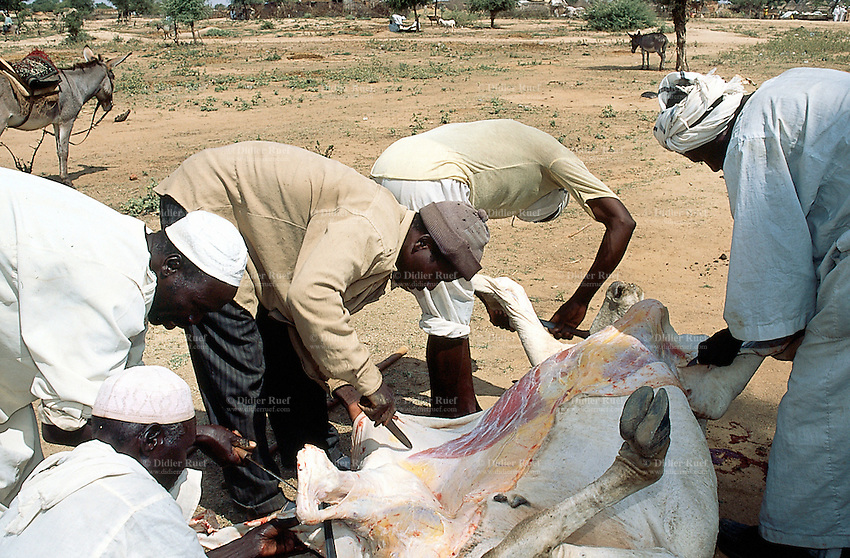Sudan. West Darfur. Kerenek. Each friday is market day and a group of butchers have killed a cow to sell the meat on the stall. The cow was killed according to the islamic tradition by cutting the throat and pouring the blood.  © 2004 Didier Ruef