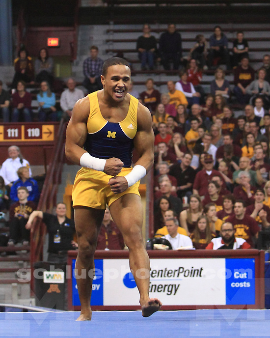 The University of Michigan men's gymnastics team won the 2013 Big Ten Championship (first of seven teams with 438.900 points) at the Minnesota Sports Pavilion in Minneapolis, Minn., on April 5, 2013.