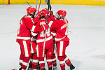 Wisconsin Badgers celebrate a goal during an NCAA women's hockey game against the Boston University Terriers on October 29, 2011 in Madison, Wisconsin. The Badgers 6-1. (Photo by David Stluka)