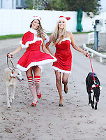 NO REPRO FEE. 1/11/2011.Christmas Crackers Rosanna Davison, Miss Universe Ireland Aoife Hannon and some of Irelands Greyhounds took to the track today at Shelbourne Park in their sleigh to launch Christmas Nights at the Dogs. The Irish Greyhound Board are launching Christmas Party Night at the Dogs at their Greyhound Stadia around the Country, encouraging everyone to book a fun night at the dogs to celebrate  the festive season. With Packages to suit every pocket from restaurant dining to drinks with the lads, it really is heart racing stuff. For more information please contact Claire O Grady insight Consultants claire@insightconsultants.ie. Picture James Horan/Collins Photo Agency