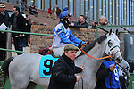 January 18, 2016: #9 Gray Sky before the running of the Smarty Jones Stakes at Oaklawn Park in Hot Springs, AR. Justin Manning/ESW/CSM