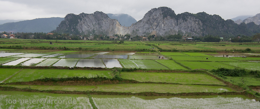 landscape with rice fields and mountains on the train ride from Hanoi to Hue, North Vietnam