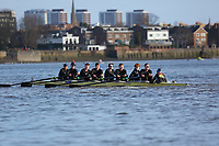 Crew: 25   Molesey (Cowley)   Op Senior<br /> <br /> Quintin Head 2019<br /> <br /> To purchase this photo, or to see pricing information for Prints and Downloads, click the blue 'Add to Cart' button at the top-right of the page.