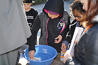 "(Photo by Allen Li, Occidental College class of 2020)<br /> 9:00am - ""Barge Building"", Hameetman Career Center patio. Each team constructs a barge of aluminum foil that can support a cargo. They predict the amount of cargo the barge will hold and load cargo until the barge takes on water.<br /> <br /> Individual competition events at the 24th Annual Los Angeles County Elementary Science Olympiad Saturday, February 24, 2018 at Occidental College."