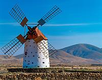 Spanien, Kanarische Inseln, Fuerteventura, Windmuehle bei Cotillo   Spain, Canary Island, Fuerteventura, windmill near Cotillo