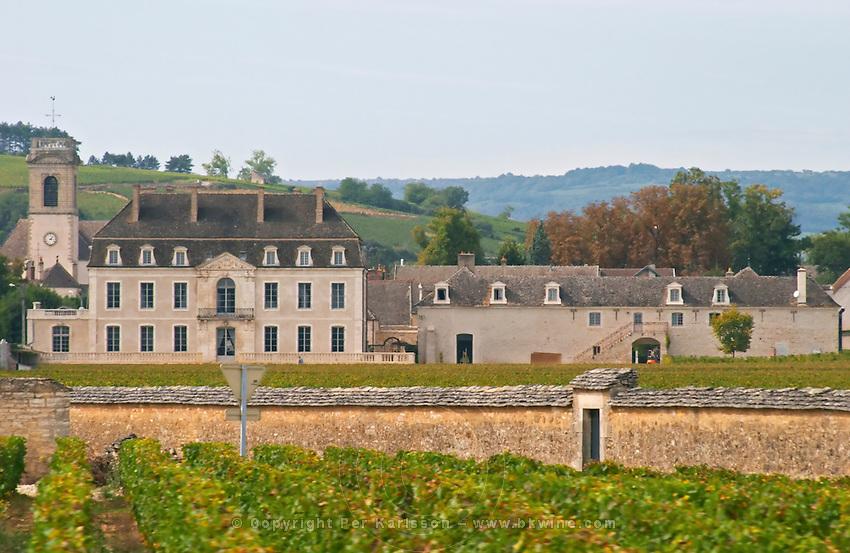 Vineyard. Chateau de Pommard. Burgundy, France